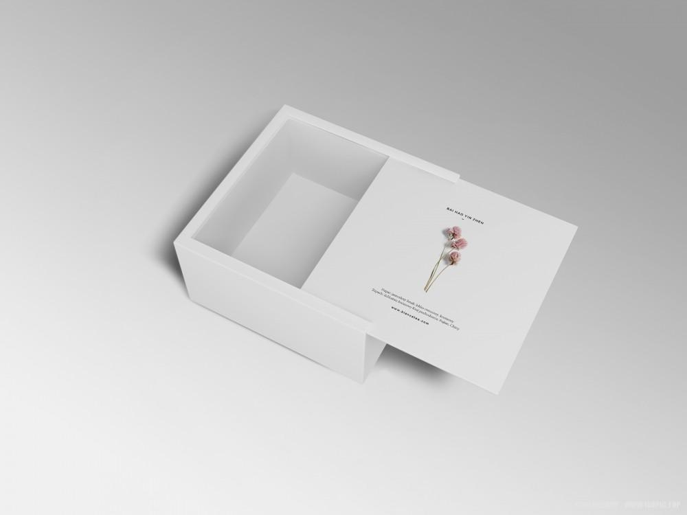 文艺雅致盒型样机