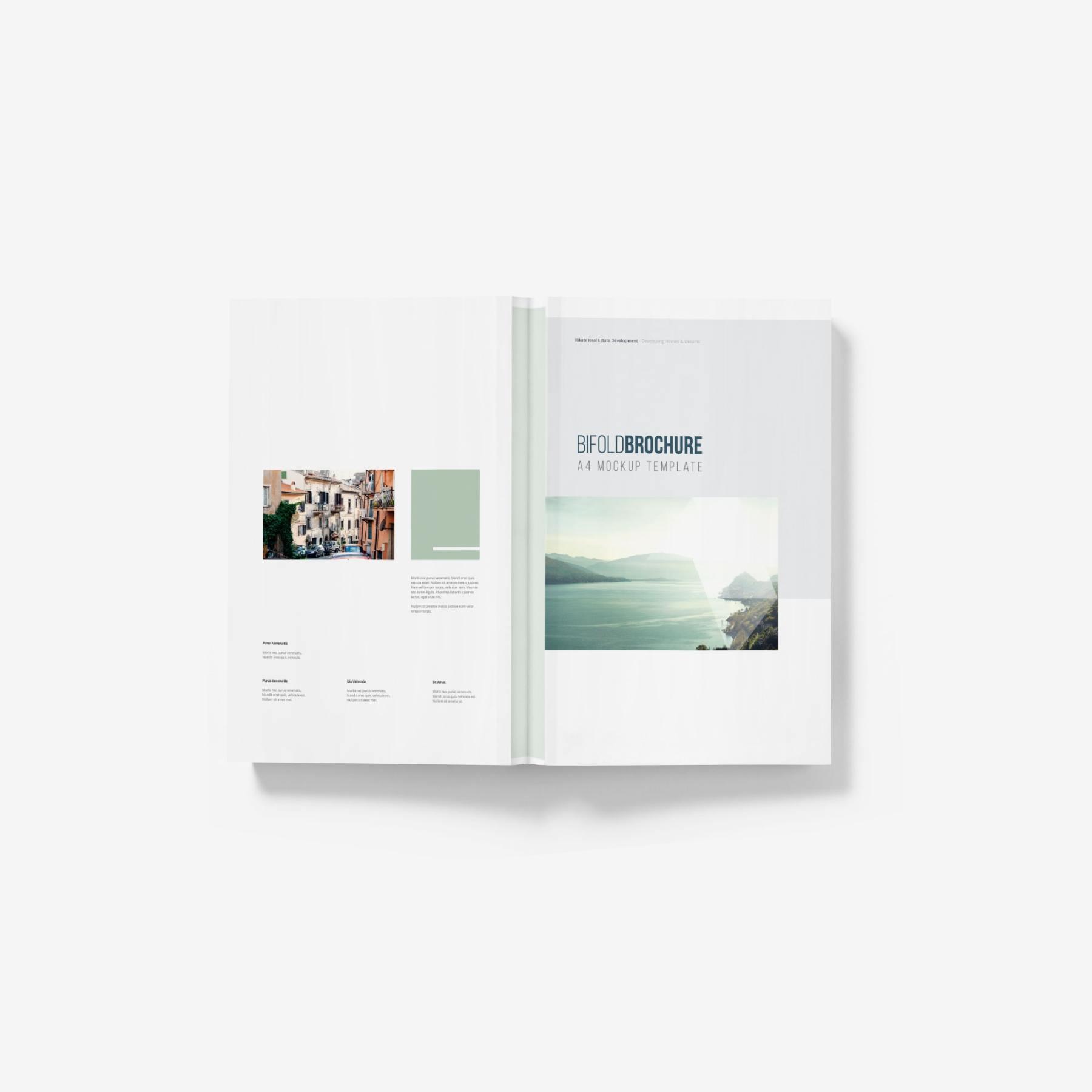 9f733ee514f4f3f - 平铺宣传书籍画册样机