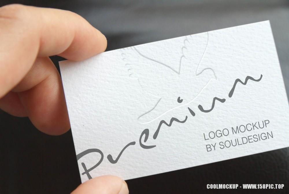 logo名片贵宾卡会员卡样机